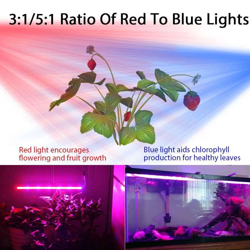 DC 12V Led Grow Light Waterproof Lamp for plants Full Spectrum Phyto lamp Red Blue Led Bar Rigid Strip For Aquarium Greenhouse Lanterns and Work Lighting